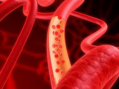 Bloedvaten kunnen met een substantie op suikerbasis geprint worden met een normale inkjet printer.