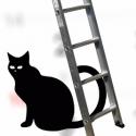 zwarte kat en ladder