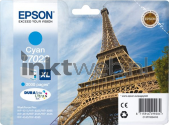 Epson T7022 cyaan C13T70224010