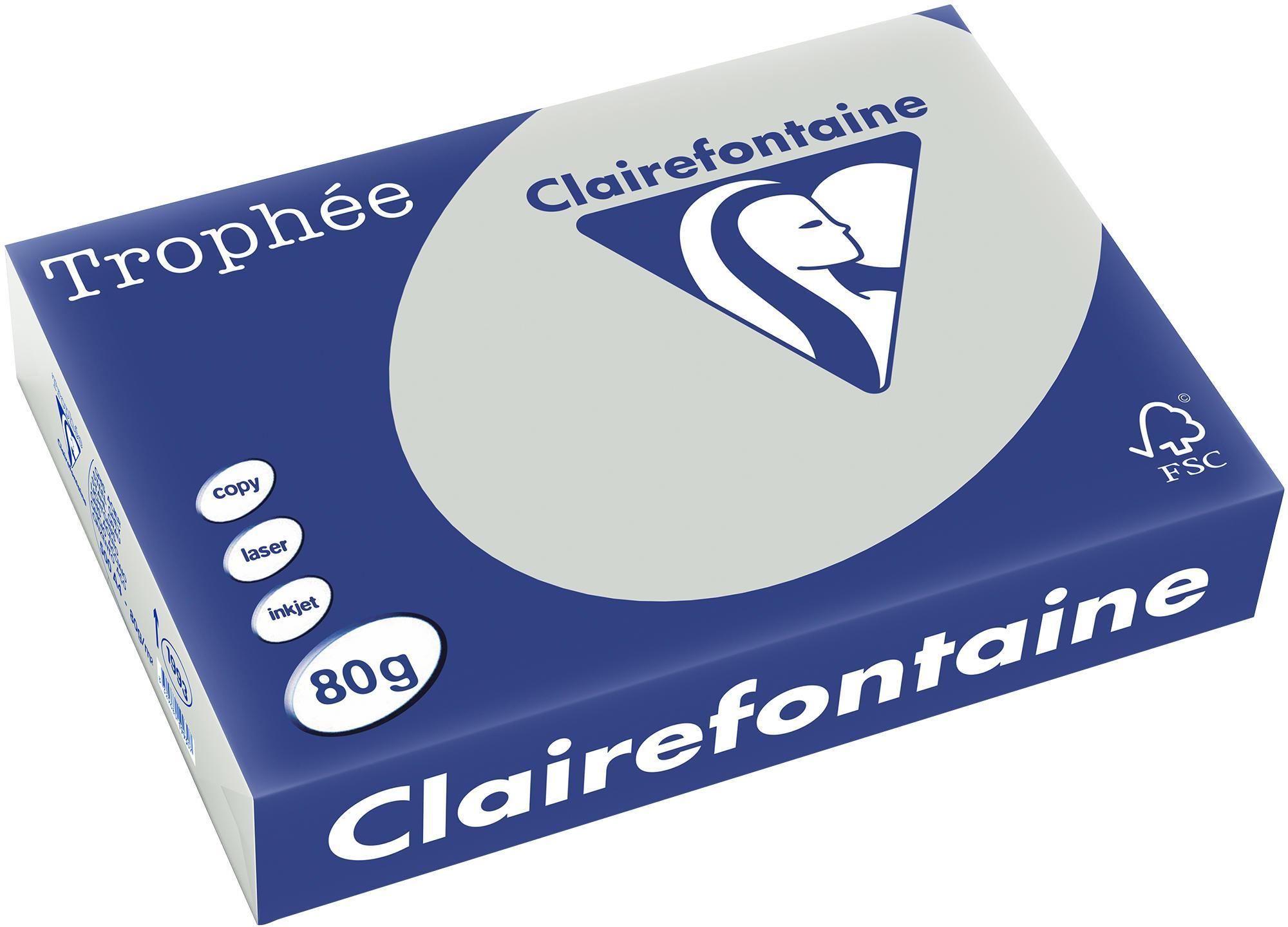Clairefontaine A4 papier gekleurd Lichtgrijs