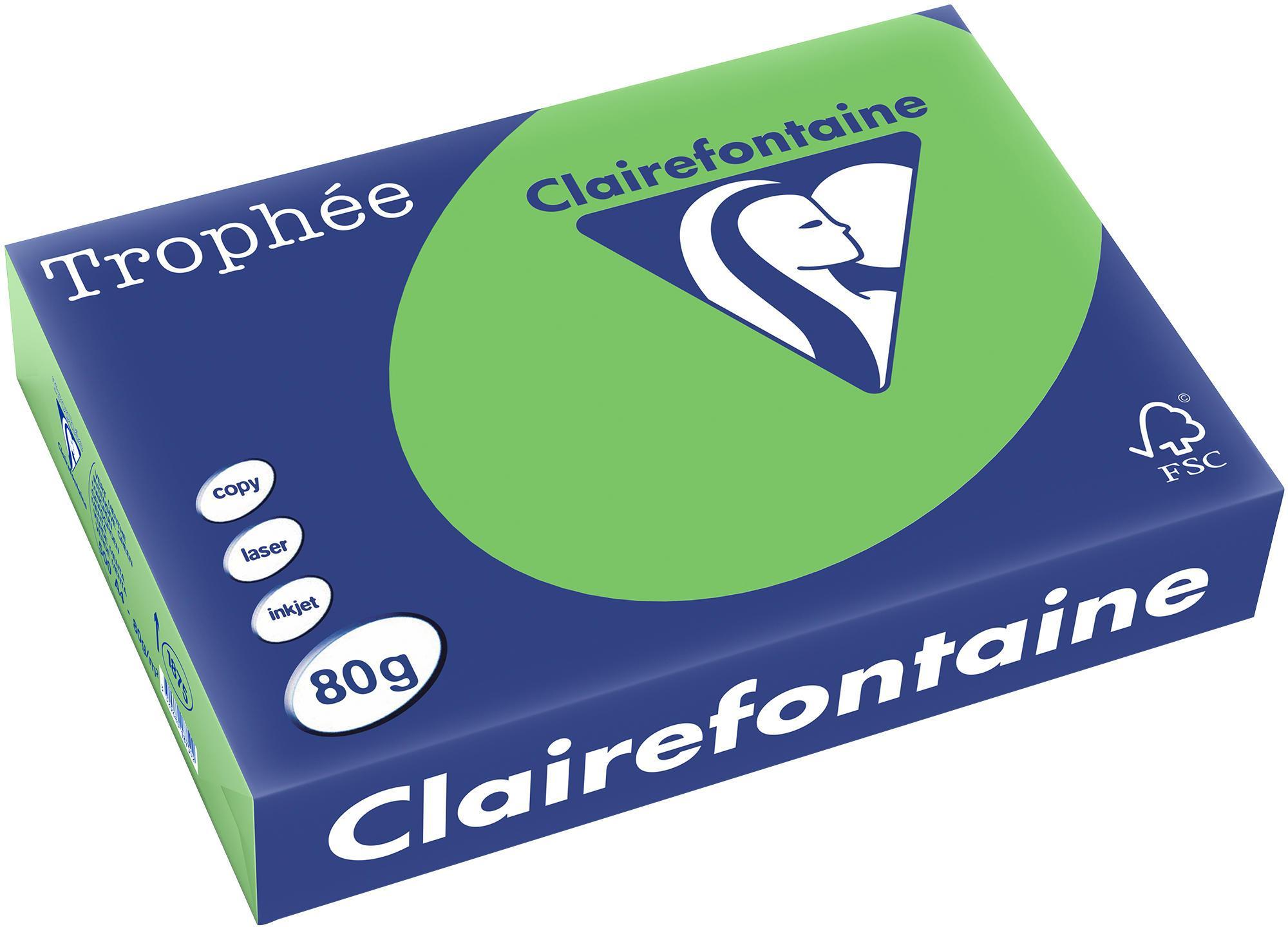 Clairefontaine A4 papier gekleurd Grasgroen